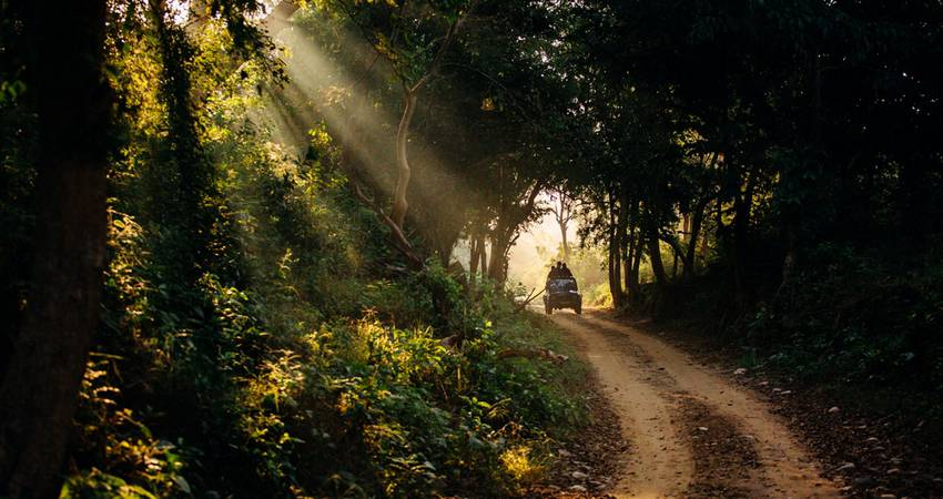 5 Places To Visit Near Jim Corbett National Park For An Extended Vacation In 2020
